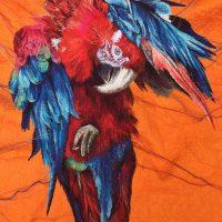 Suzy Wright – Birds of Paradise